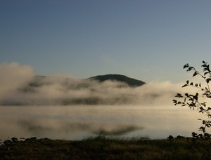 <b>A beautiful foggy morning at the waterfront. Photo courtesy of Mike Diamond.</b>